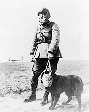 WWI French Soldier & Dog Gas Mask Photo Print for Sale