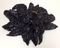 Chile Pasilla Entero - Dry Pasilla Peppers Large Bag - image -1