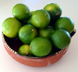 Fresh Mexican Key Limes - Limones