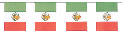 Mexican Flag Paper Banner