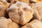 Pan de Muerto - Mexican Bread of the Dead - Small - image -1