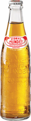 Sidral Mundet Apple Soft Drink (Pack of 6)