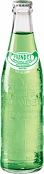 Sidral Mundet Green Apple Soda (Pack of 6)