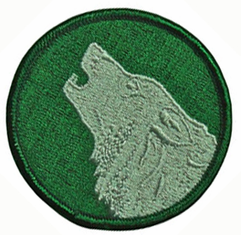 104th Infantry Training Division Patch