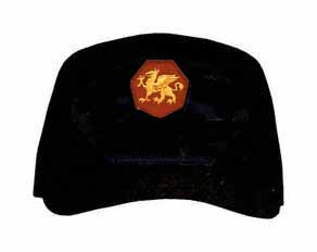 108th Training Division Direct Embroidered Ball Cap