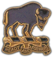 10TH CAVALRY REGIMENT LAPEL PIN