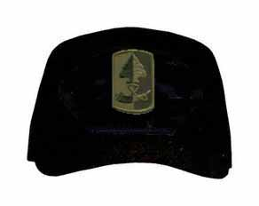 187th Infantry Brigade Subdued Patch Ball Cap