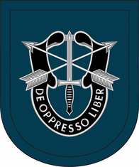 19th Special Forces Group Airborne Flash Decal