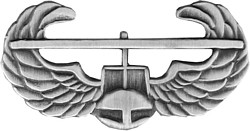 Air Assault (small) Lapel Pin