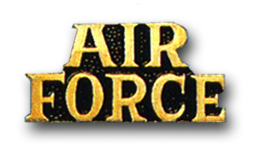 'AIR FORCE' MILITARY <BR>LAPEL PIN