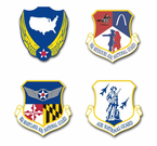 Air Force National Guard Vinyl Transfer Decals