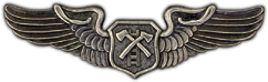 Air Rescue Wings Lapel Pin