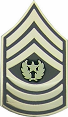 Command Sergeant Major E9 Lapel Pin