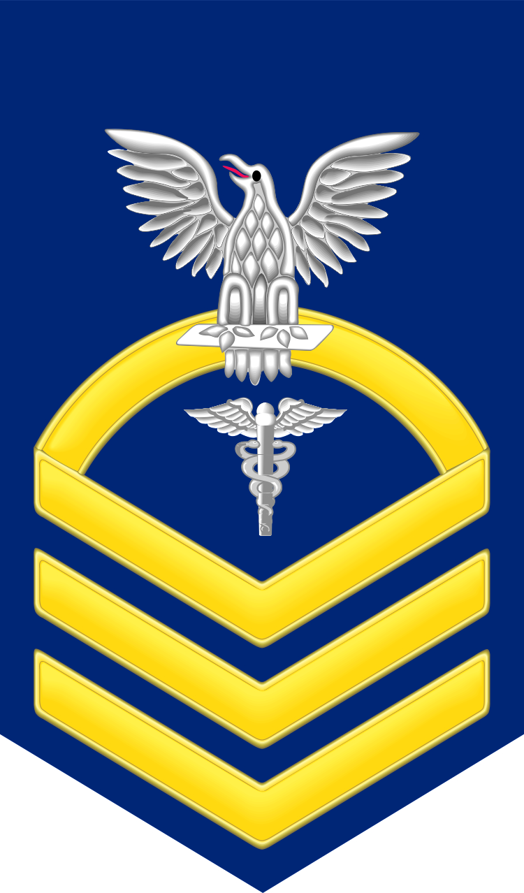 Chief gold e 7 hospital corpsman hm decal sticker navy chief gold e 7 hospital corpsman hm decal sticker biocorpaavc Gallery