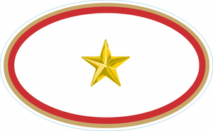 One Gold Star Service Banner Oval Decal