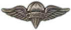 Rigger Aviator Wings Lapel Pin