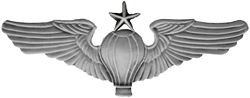 Senior Balloon Pilot Wings Pin