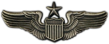 Senior Pilot Wings Lapel Pin