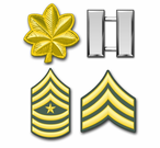 U.S. Army Rank Insignia Stickers