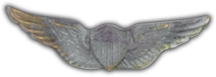 U.S. Army Aviator Wings Lapel Pin