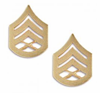 U.S. Marine Corps ENLISTED Anodized Gold Rank Insignia