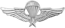 "Vietnam Jump Wings 2.25"" Pin"