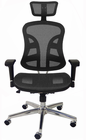 TrendFlex Elastic Mesh Ergonomic Chair w/Headrest