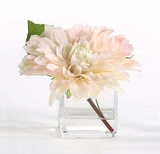 Blush Dahlia in Square Vase
