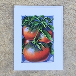 Cherokee Purple Tomato Notecard