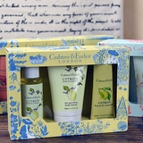 Citron Gift Set