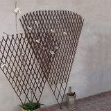 "Fan Twig Trellis 66"" x 48"""