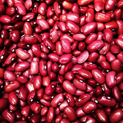 Hidatsa Red Bean (Phaseolus vulgaris variety)