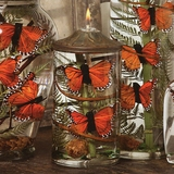 Monarch Butterfly Candle