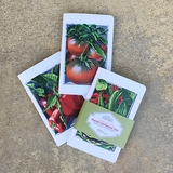 Monticello Vegetable Pocket Notebook Trio