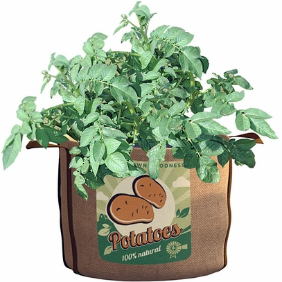 Potatoes Planting Bag