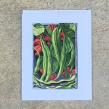 Scarlet Runner Bean Notecard