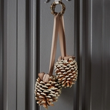 Silver-Tipped Hanging Pinecones