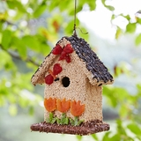 Spring Seed & Fruit Edible Birdhouse