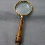Tulip Poplar Magnifying Glass