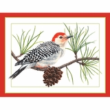 Woodpecker Boxed Greeting Cards