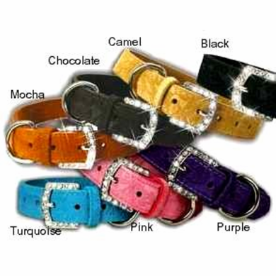 1/2 in Rhinestone Buckle Suede Dog Collar