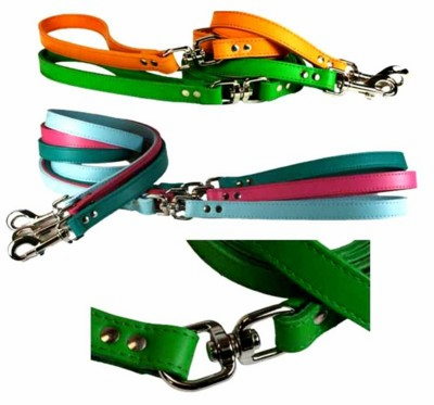 1/2 inch x 6 Ft Leather Lead with a Swivel