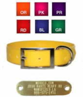 1 in wide Sunglo Dog Collar with attached Name Plate