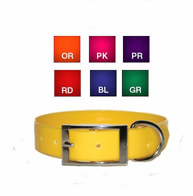 1 in wide Sunglo Dog Collar with Name Plate