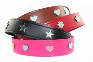 2 in Wide Leather Collars for Large Dogs