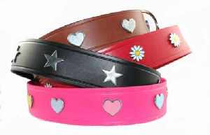 2 in Wide Custom Made Leather Collars for Large Dogs