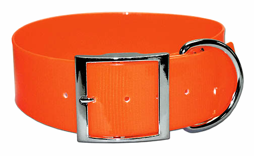 2 inch wide orange SunGlo dog collar