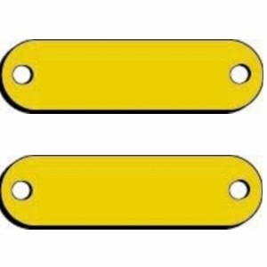 Blank Brass Name Plates for Dog Collars. 3/4 x 2-3/4