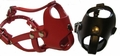 Boston Terrier Dog Muzzles