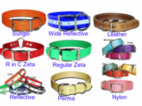 Collars for Hunting Dogs